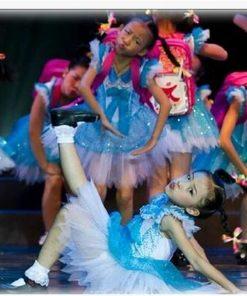 Little Swan Dance Costumes Ballet Dress for Girls Blue Veil Short Sleeve Princess Meninas Saia Ballet Dance wear 1