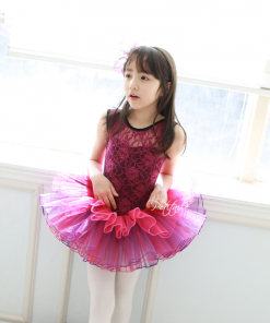Kids Ballet Tutu Dance Skirt Short Sleeve Lace  Princess Dancing Dress Party Costume Clothes