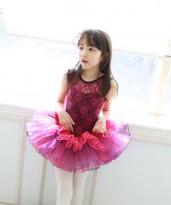 Kids Ballet Tutu Dance Skirt Short Sleeve Lace  Princess Dancing Dress Party Costume Clothes