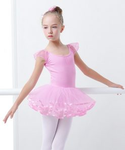 Kawaii Toddler Girls Ballet Tutu Dance Leotards Pink Fairy Tutu Ballet Dress For Girls 1