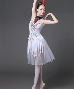 Adult Female Ballet Costume Dance Dress Swan Lake TUTU Long Skirts Gym Clothes for Girls Contemporary Dance Costumes
