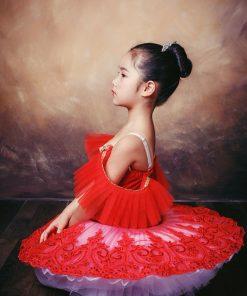 New Children Plattered Tutu Ballet Skirt Red Pettiskirt Swan Lake Show Dance Performance Costume 1